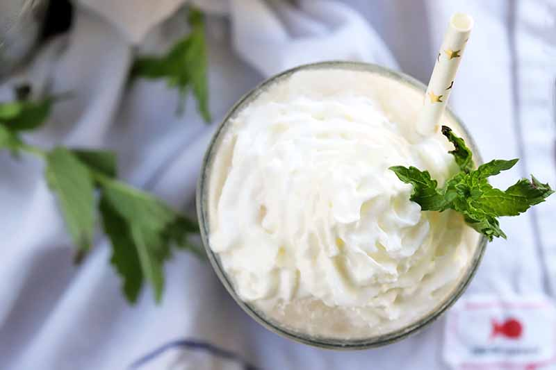 Overhead shot of a glass topped with whipped cream and a sprig of mint with a white straw with gold foil decorative accents, on a gray wrinkled and gathered cloth with more fresh herbs.