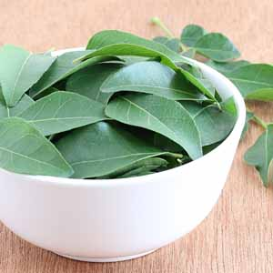 A white porcelain bowl full of fresh curry leaves.
