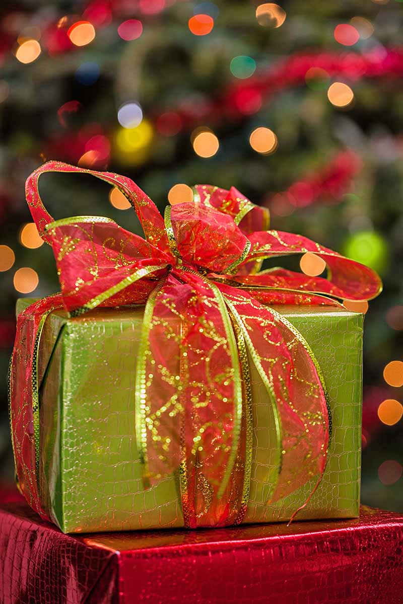 A present wrapped in shiny gold paper and tied with a red and gold fabric box is on top of another gift wrapped in shiny metallic red paper, with a decorated and lid Christmas tree in soft focus in the background.