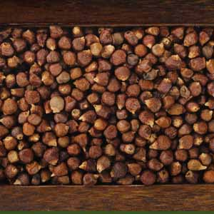 Top down view of a small wooden tray full of grains of paradise.