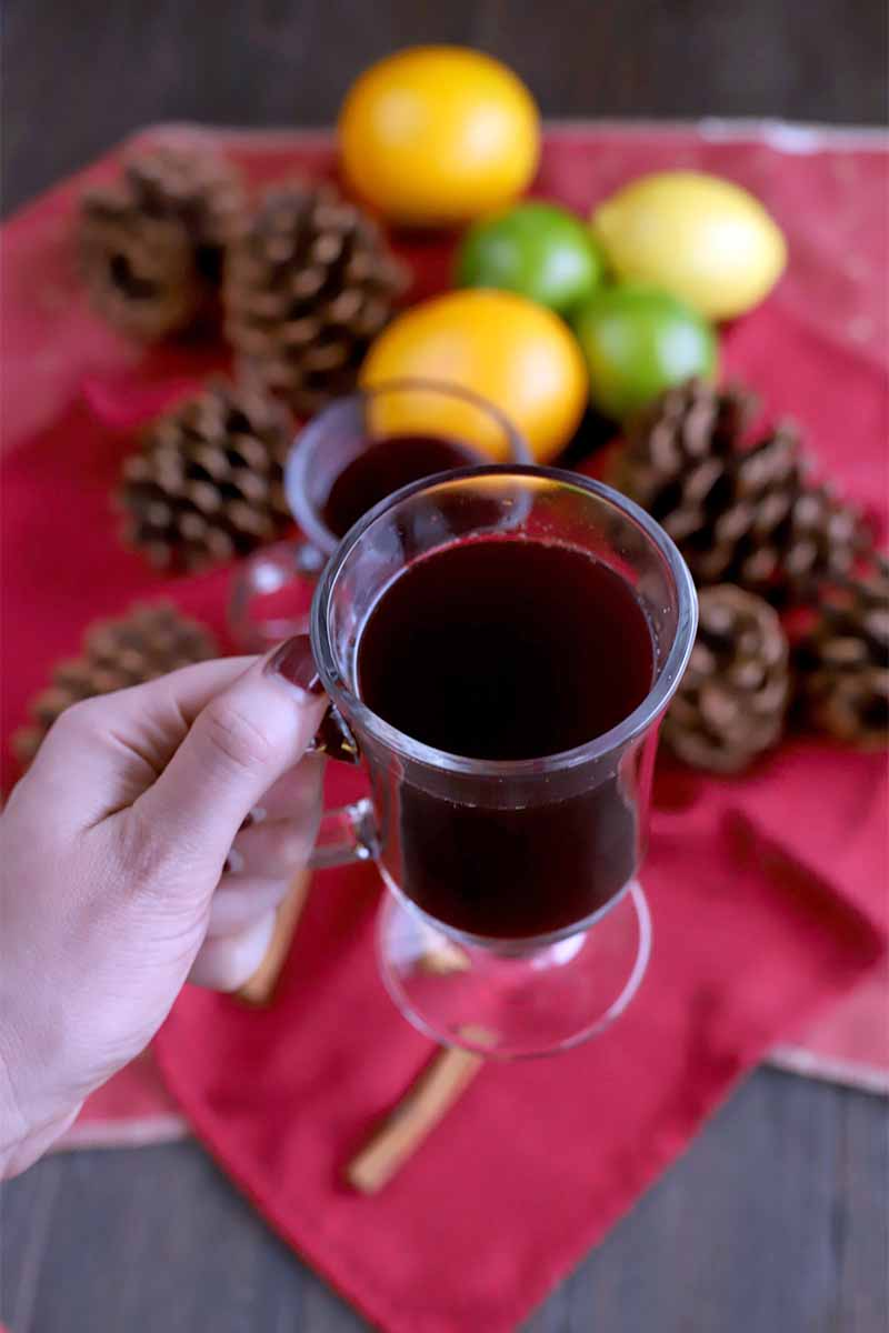 A woman's hand with red manicured nails holds a glass mug of mulled wine, with a dark brown wood surface topped with a red cloth and oranges, limes, lemons, pine cones, and cinnamon sticks in the background.