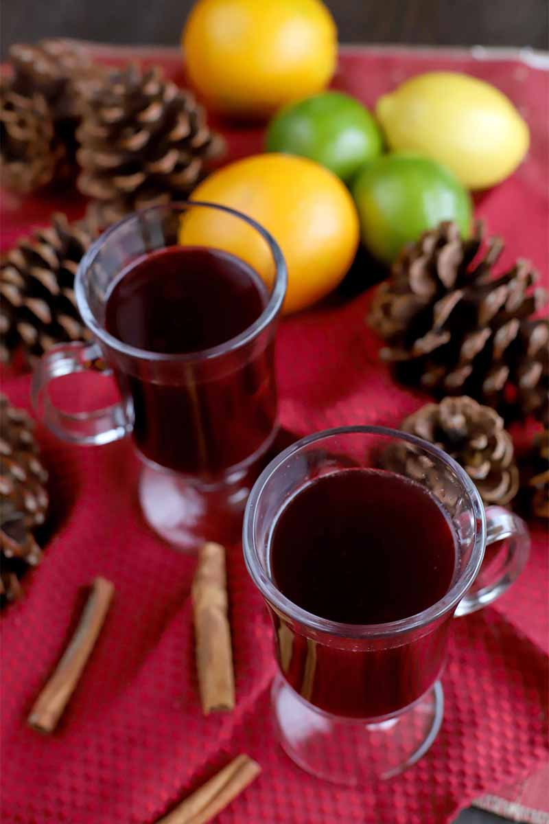 Oblique shot of two glass mugs of mulled wine, on a red fabric surface with pine cones, citrus fruits, and whole cinnamon sticks.