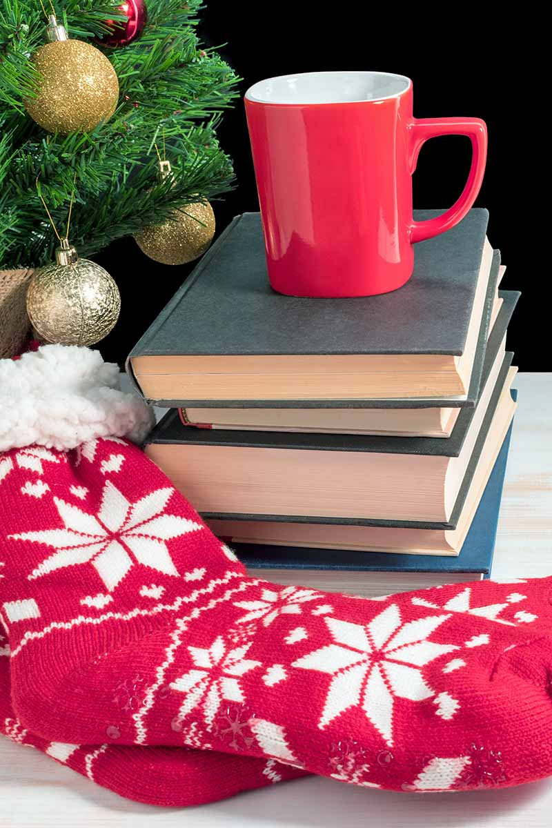 Vertical image of a stack of books with a red mug on top and a red and white pair of holiday socks in the foreground, with a decorated Christmas tree in the background, on a white surface against a black backdrop.