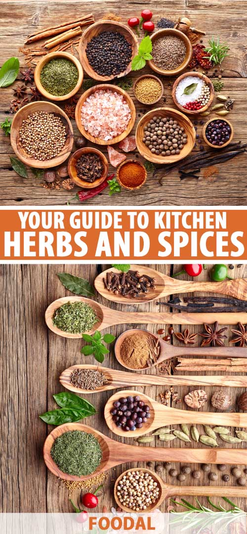 A collage of photos showing different views of fresh and dried herbs and spices.