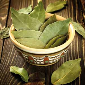 A close up of a patterned ceramic bowl full of freshly dried bay leaves.