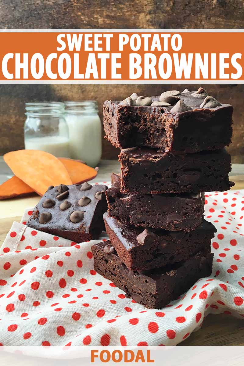 Want a Super Fudgy Chocolate Brownie? Add Sweet Potatoes!