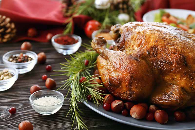 Horizontal close-up image of the leg of a roasted bird next to holiday garnishes.