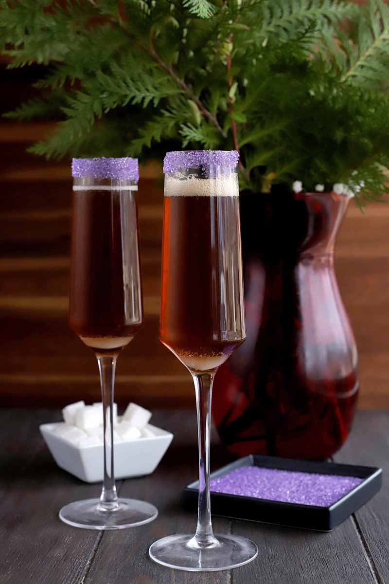 Two cocktails in champagne flutes with purple rims, with more of the sugar in a black shallow dish to the right, and a small white dish of white cubes beside a maroon vase filled with evergreen branches against a brown background.