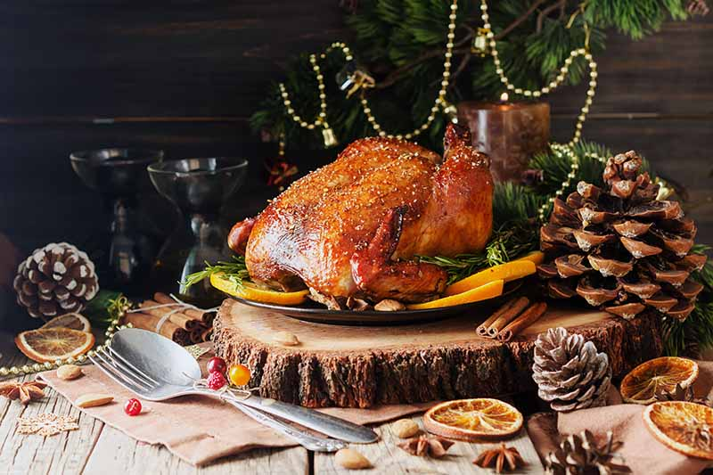 Horizontal image of a whole roasted turkey on a wooden serving platter surrounded by holiday decor.