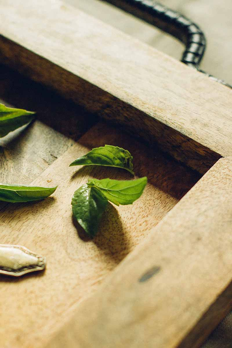 Vertical image of basil leaves on a wooden board.