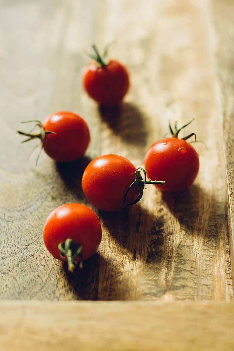 Vertical image of fresh tomatoes on a wooden surface.