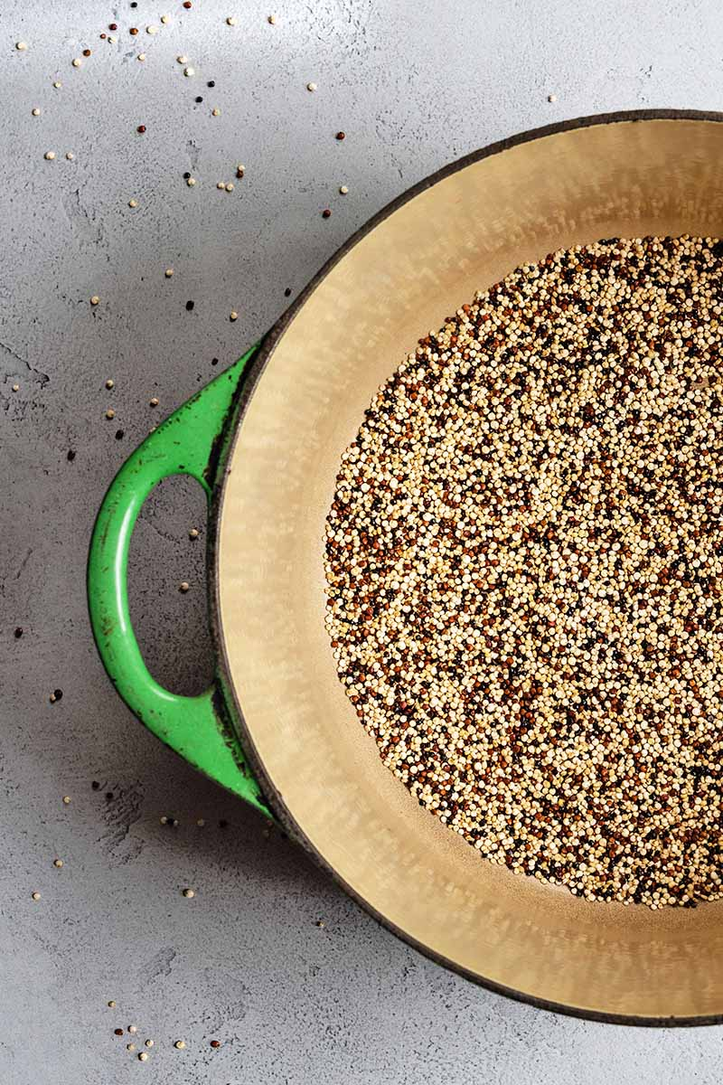 Closely cropped overhead shot of a green and beige enameled cooking pot with multicolored uncooked quinoa at the bottom, on a white and gray speckled surface with scattered seeds.