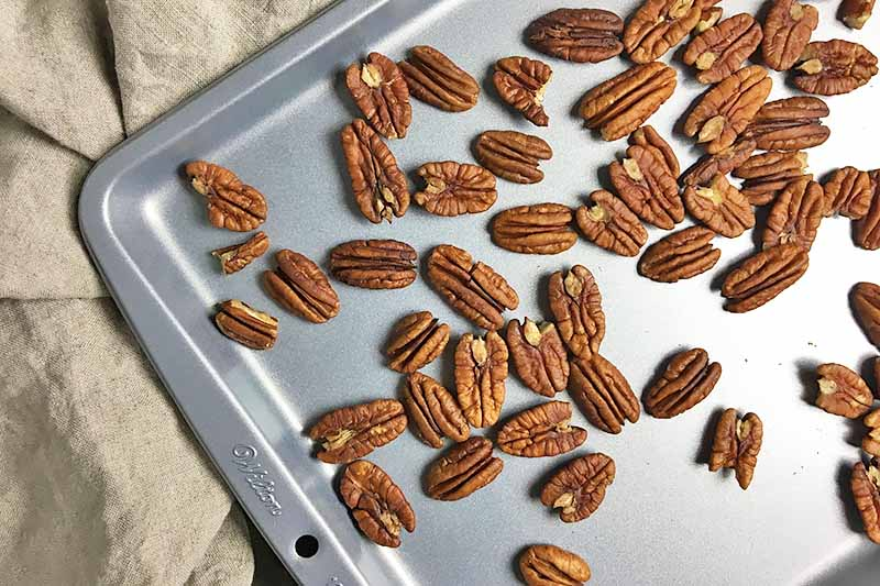 Horizontal image of toasted pecans on a baking sheet pan.
