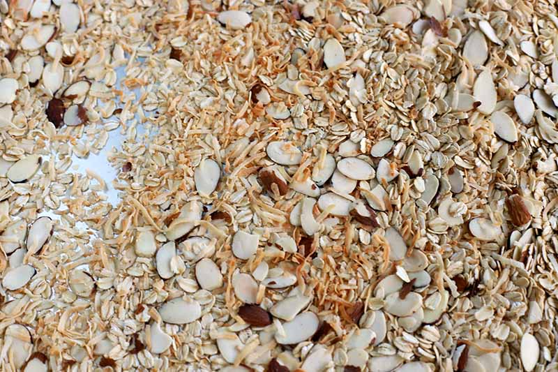 Closeup shot of toasted shredded coconut, oats, and slivered almonds, on a baking sheet topped with parchment paper.