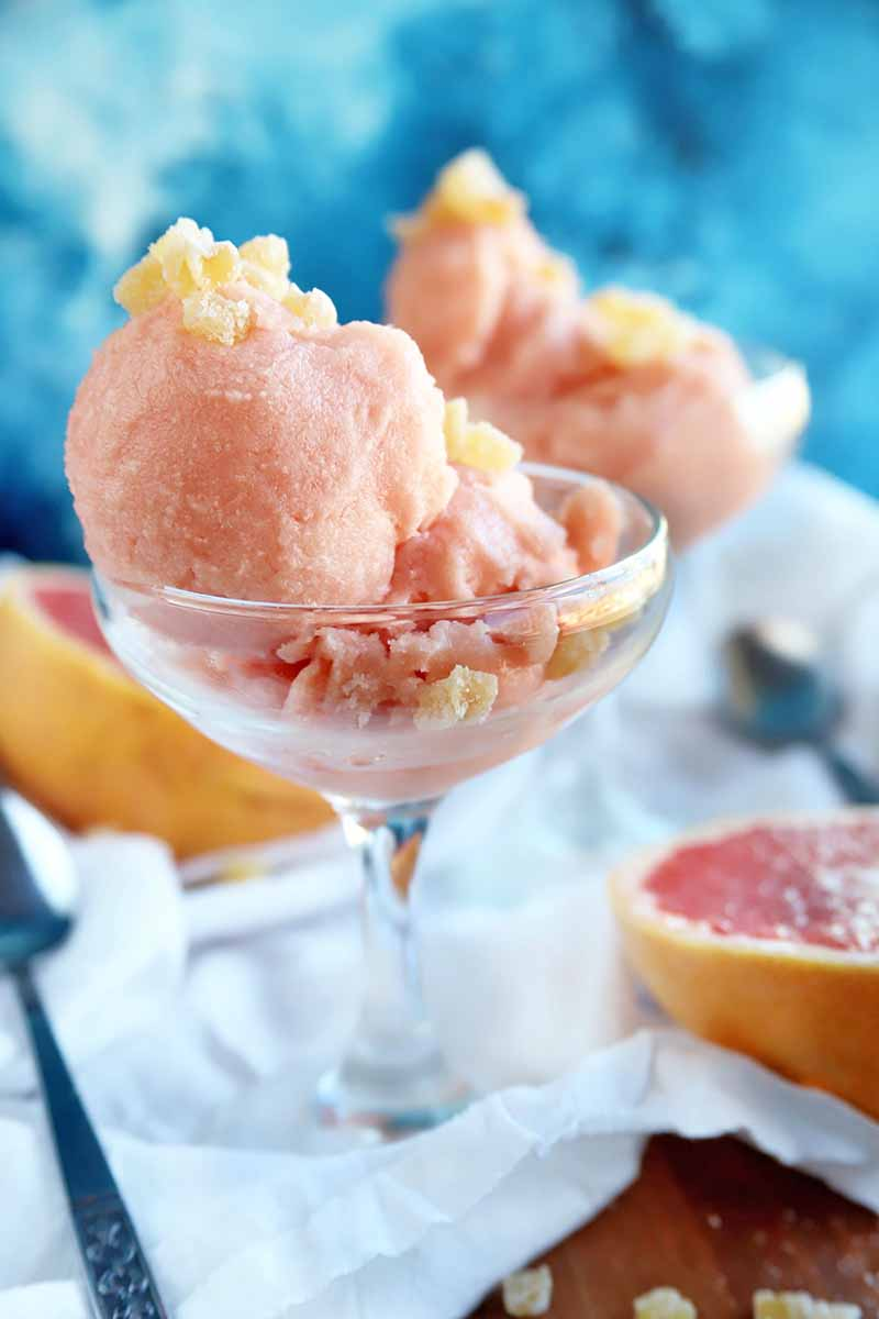 A glass dessert dish filled with a pink homemade fruit sorbet with chopped candied ginger sprinkled on top, with another identical dish in soft focus in the background, and two halves of a ruby red grapefruit with two spoons on a white cloth, on top of a brown table with crystallized ginger root strewn across it, on a watercolor blue background.
