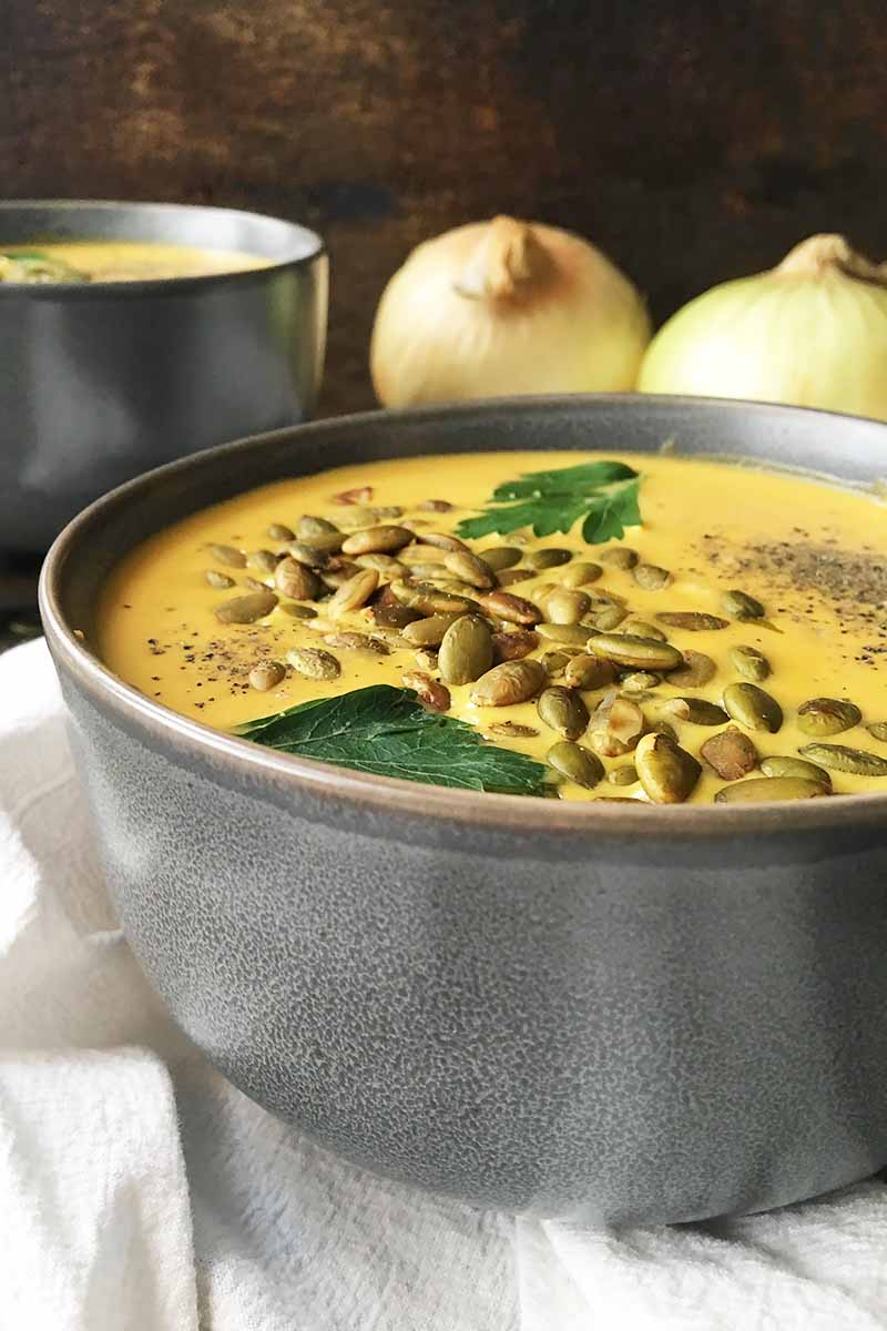 Vertical image of two gray bowls of soup garnished with seeds and herbs with onions in the background.