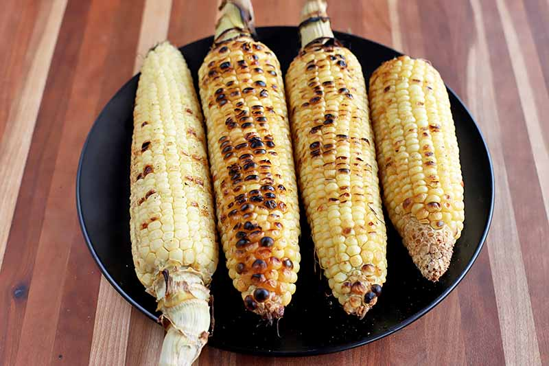 Horizontal image of grilled whole corn on a black plate.