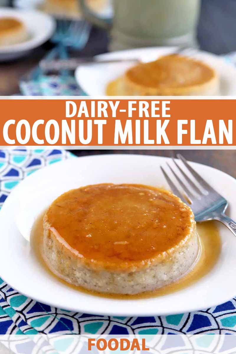 Coconut Milk Mexican Flan Recipe (Dairy Free) | Foodal
