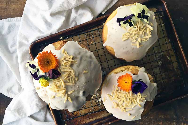Horizontal image of three round loaves of bread garnished with a white glaze and nuts and edible flowers.