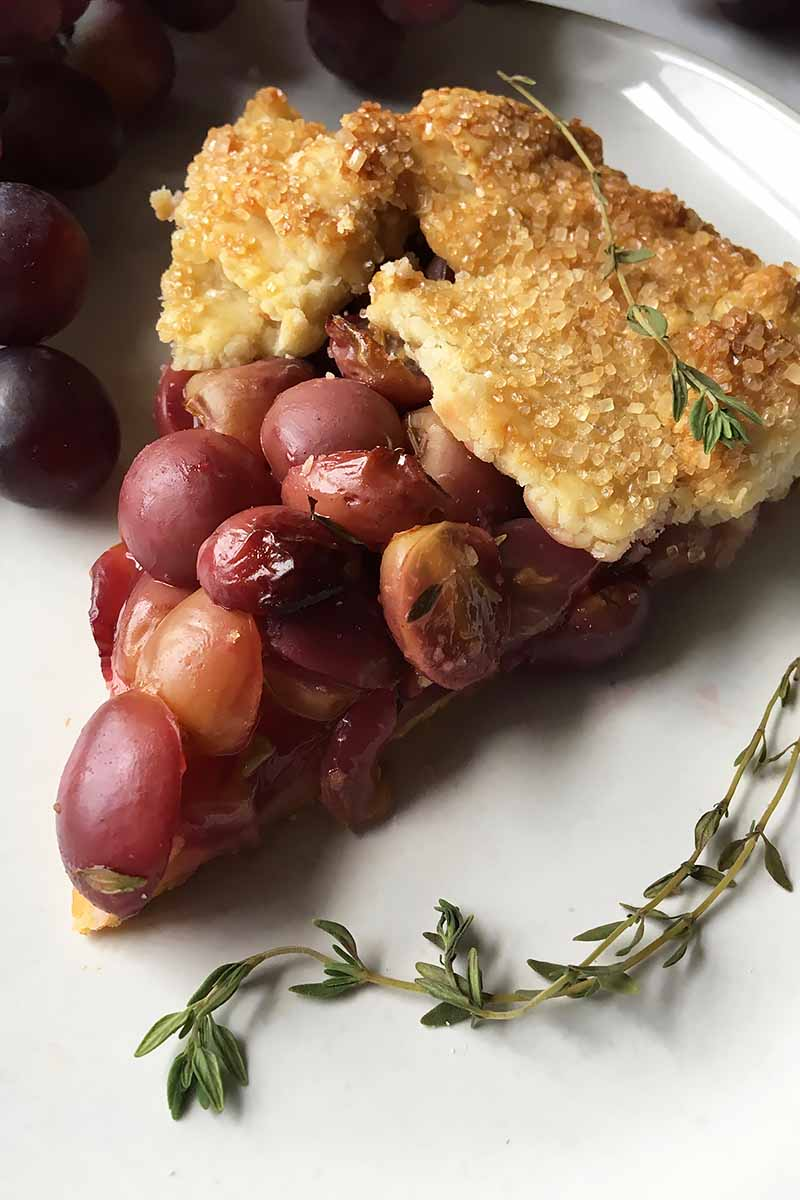 Vertical image of a slice of grape galette with fresh thyme.