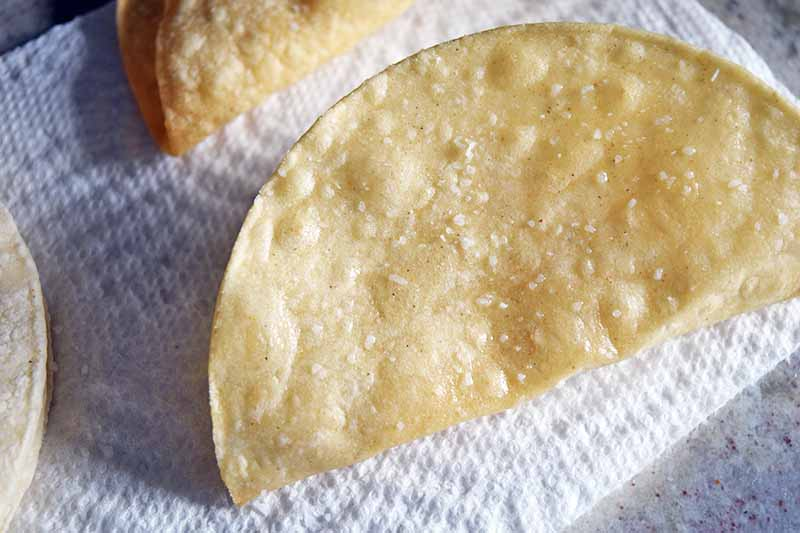 Closeup overhead horizontal image of fried homemade corn taco shells sprinkled with salt, on a piece of paper towel on top of a gray countertop.