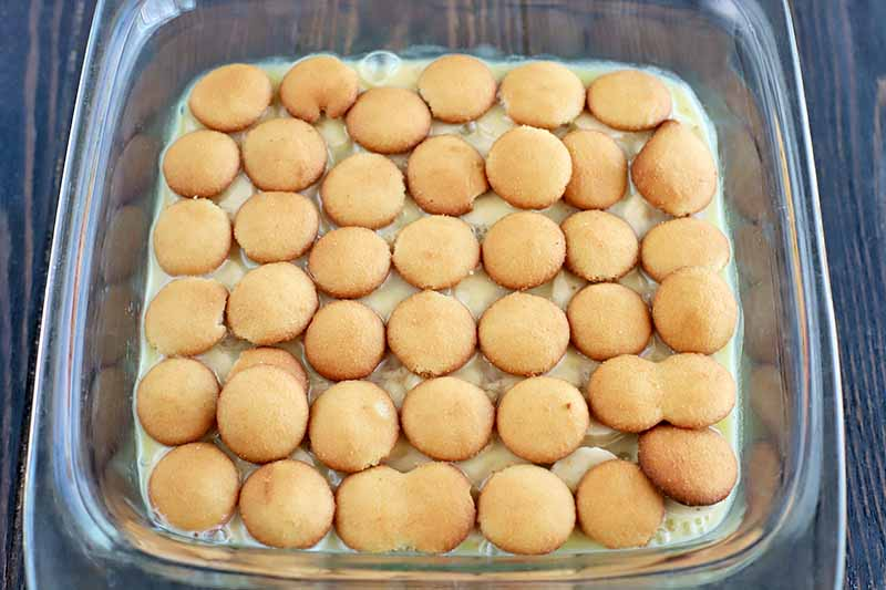 Horizontal overhead image of wafer cookies soaked in a pudding mixture arranged in rows in the bottom of a square glass baking dish, on a dark brown wood surface.