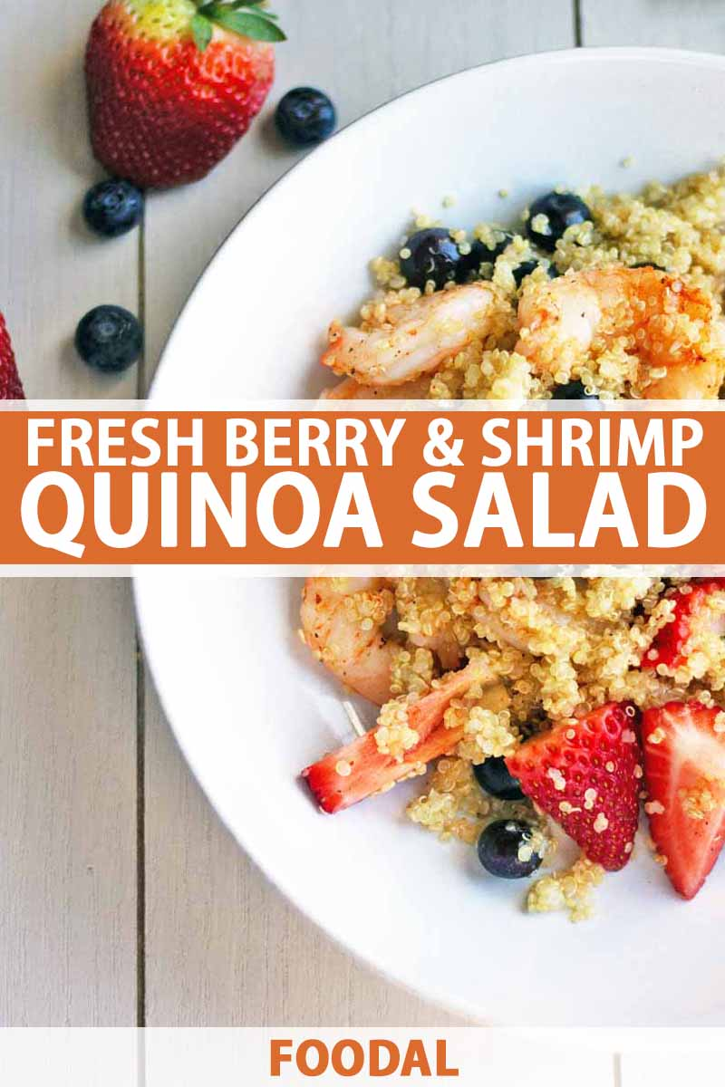 Overhead closely cropped image of a shallow white creamic bowl of cooked quinoa with pink cooked shrimp and fresh berries to the right, and scattered strawberries and blueberries to the left on an off-white surface, printed with orange and white text at the midpoint and bottom of the frame.