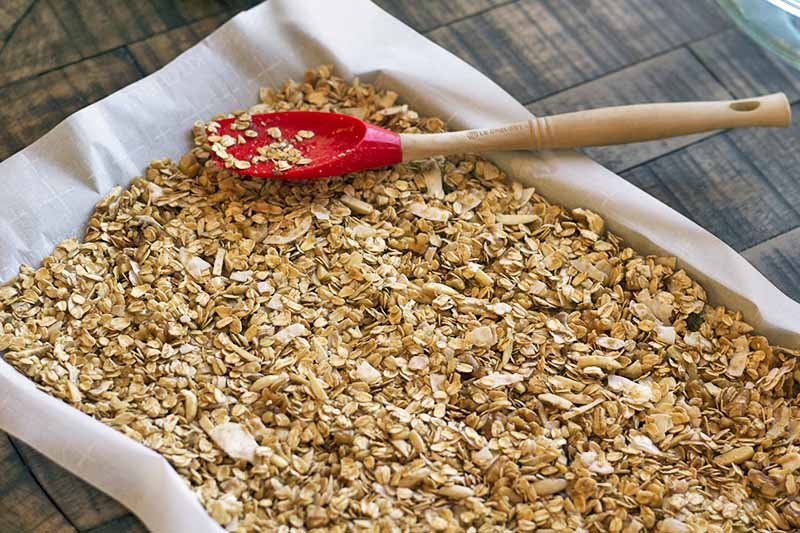 Horizontal image of a homemade oat, nut, spice, and brown sugar mixture ready for baking, spread in a thin layer on a metal rimmed baking sheet lined with white parchment paper, with a red silicone and unfinished wood spatula on top, on a brown wood surface.