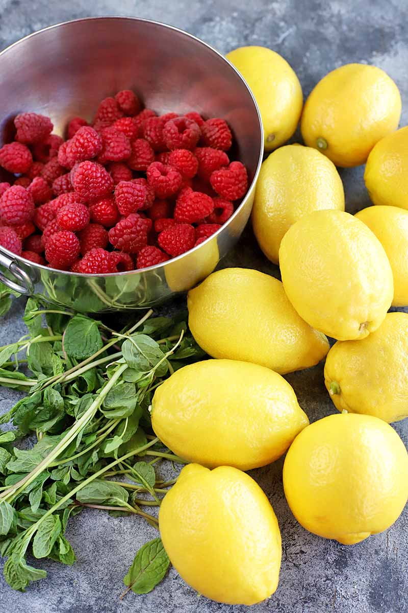 Vertical image of lemons, a stainless steel bowl of raspberries, and sprigs of fresh mint on a gray surface.
