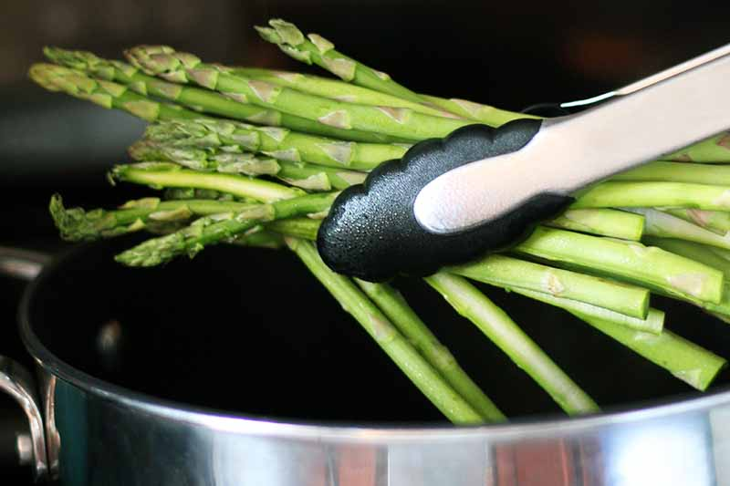 Horizontal image of metal and black plastic tongs gripping a bunch of asparagus, held over a large stock pot, with a black background.