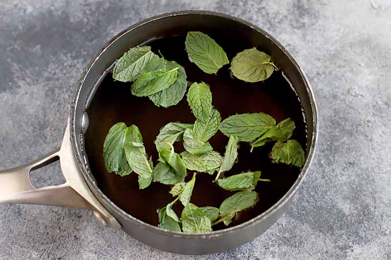 Horizontal image of a small saucepan of honey syrup and fresh mint leaves, on a mottled gray and white surface.