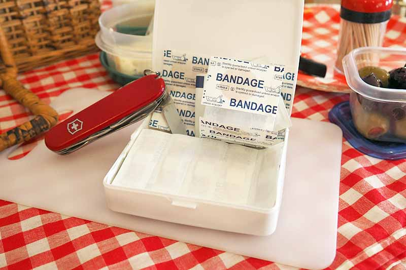 A Swiss army knife and first-aid kit sit atop a cutting board. Olives, toothpicks, and disposable plates surround the cutting board.