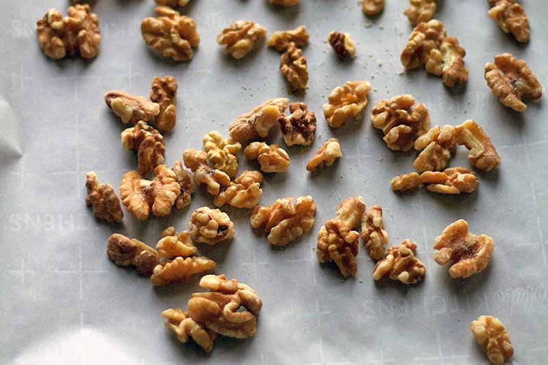 Closeup image of walnut halves and pieces on a white piece of parchment paper.