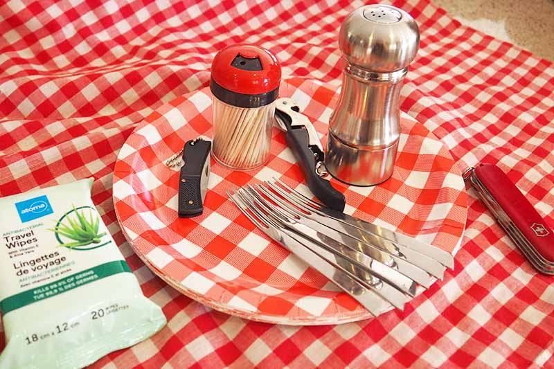 Eating utensils with salt-and-pepper shaker on checkered plate with matching blanket. Travel wipes are included for clean-up.
