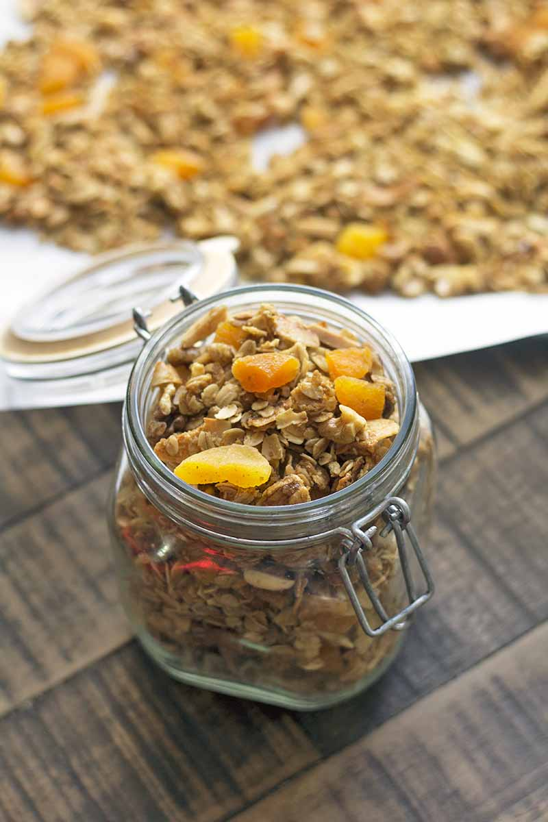 Oblique vertical image of a glass swingtop jar with the lid open to show a white rubber gasket, filled with homemade apricot and nut granola, with more of the cereal on a baking sheet topped with white parchment paper in soft focus in the background, on a brown wood table.