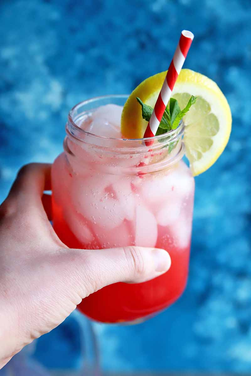 Vertical image of a hand holding a mason jar of pink lemonade with ice, with a red and white paper straw, a wheel of yellow citrus, and a sprig of mint, on a mottled blue background.