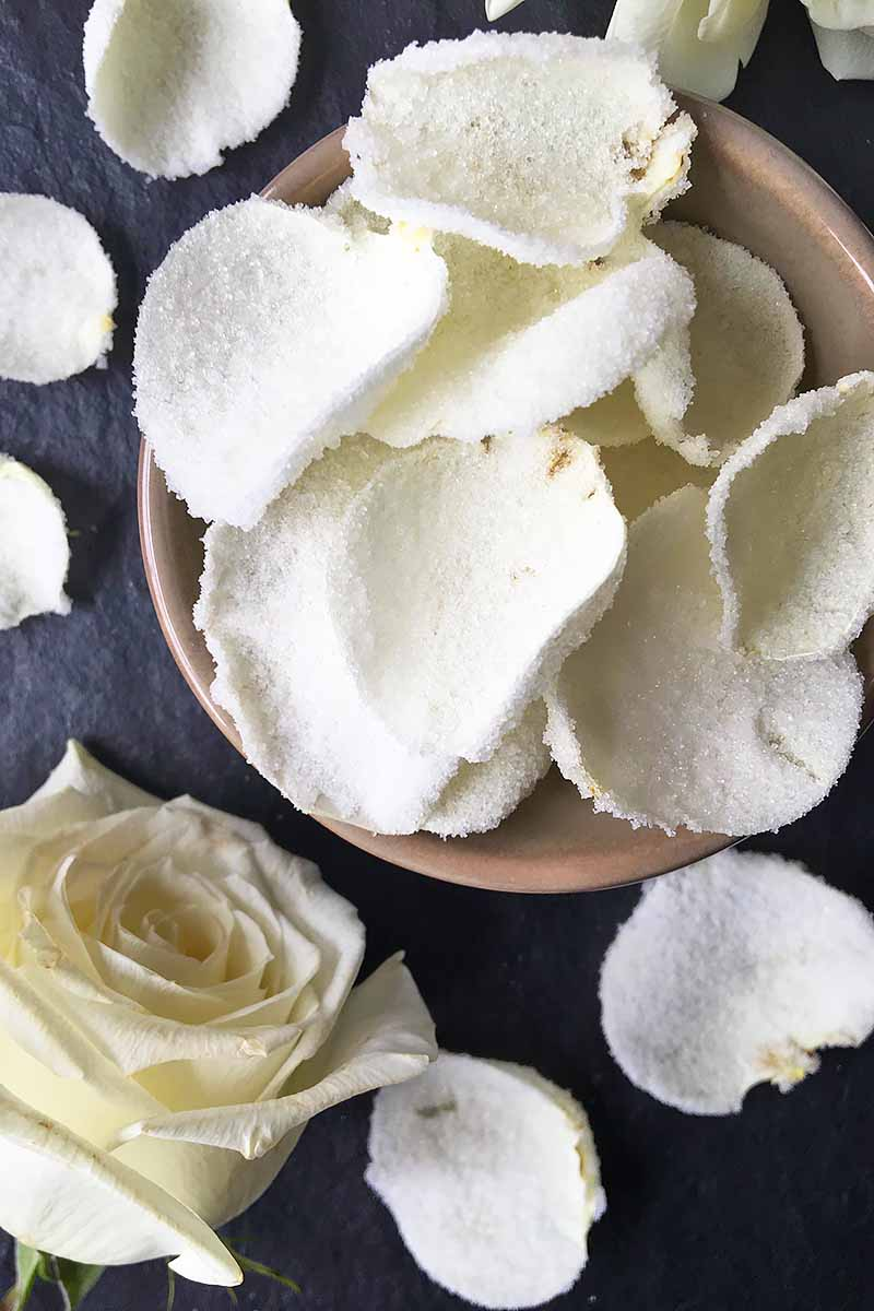 Vertical top-down image of a brown bowl of white sugared rose petals on a slate next to a whole rose.