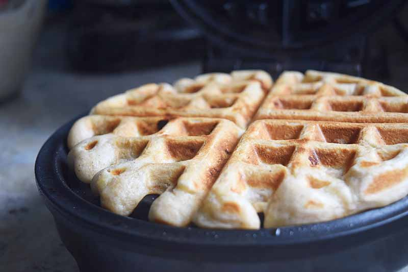 Horizontal image of a cooked fluffy waffle in an iron.