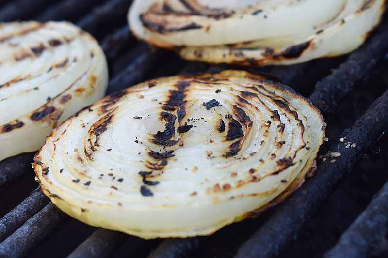 Sliced onion rounds on a charcoal grill, with grill lines visible on top.
