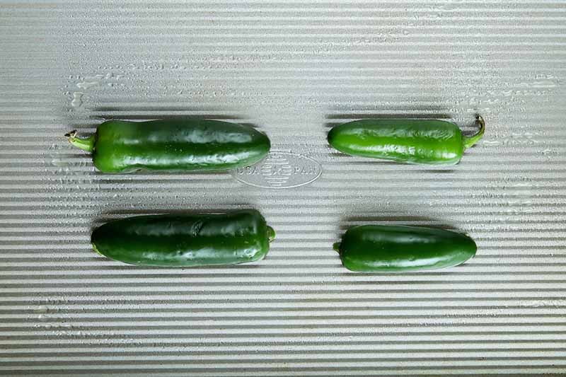 Overhead horizontal image of a metal baking sheet with a ribbed surface, with four jalapeno halves arranged cut side down in two rows.