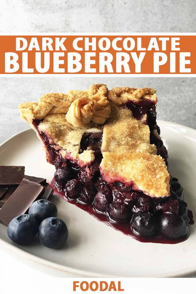 Vertical image of a slice of juicy blueberry pie on a plate next to fresh fruit and candy chunks, with text on the top and bottom.