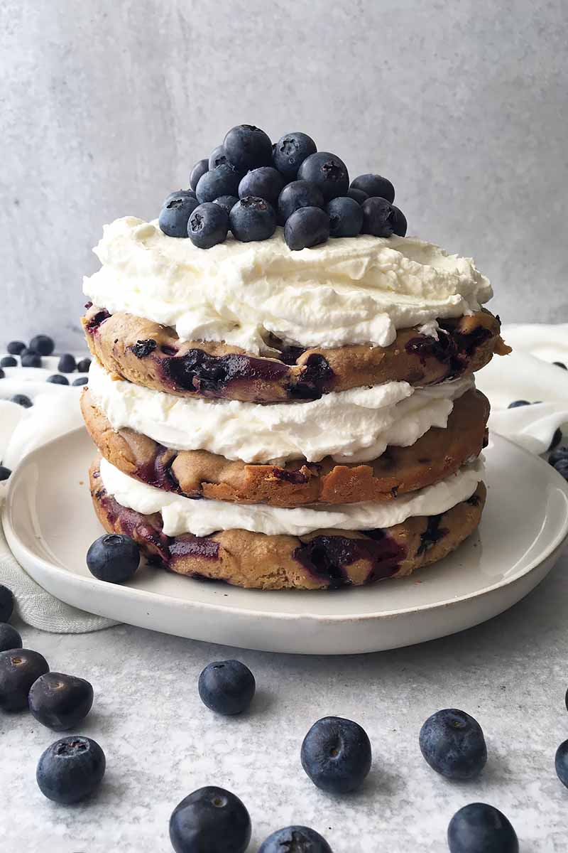Vertical image of a whole three-layered fresh fruit cake with whipped cream on a white plate.