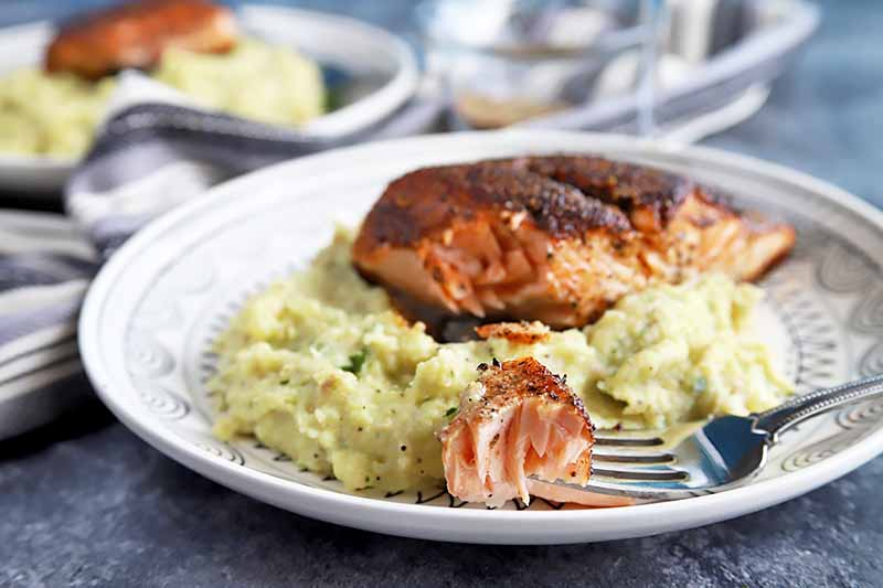 Horizontal image of a plate of mashed potatoes with salmon and a fork holding a piece of salmon.