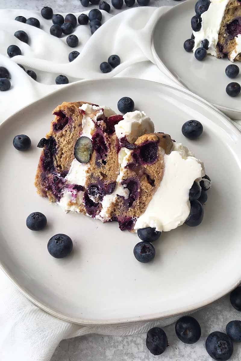 Vertical image of a small slice of a three-layered blueberry cake on a white plate on a white towel with fresh fruit.