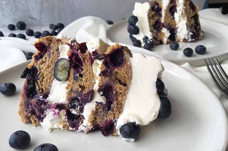 Horizontal image of blueberry cakes with whipped cream on white plates with fresh fruit and a fork.