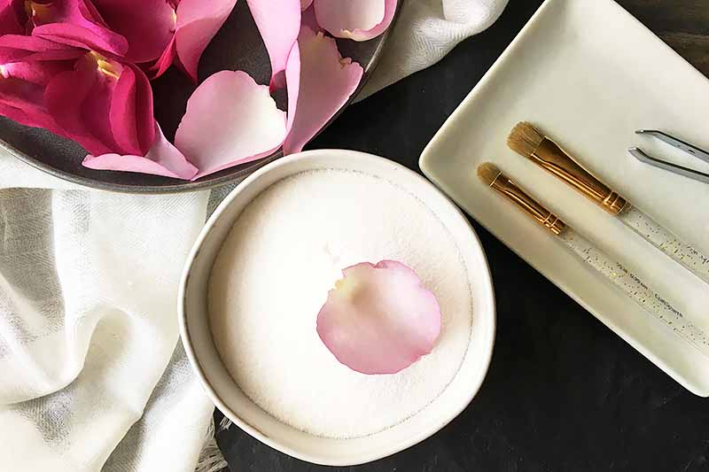 Horizontal image of a pink petal on top of a white bowl of sugar next to a white plate with brushes and a gray plate with more petals.