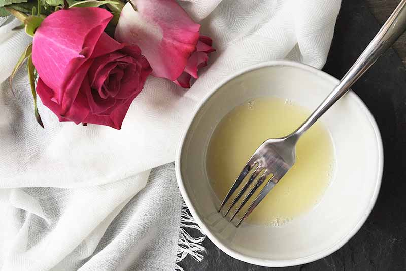 Horizontal image of a fork whisking egg whites in a white bowl next to roses on a white towel.