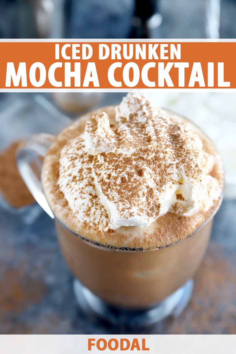 Vertical image of a glass with a brown liquid topped with whipped cream and cocoa powder garnishes, with text on the top and bottom of the image.