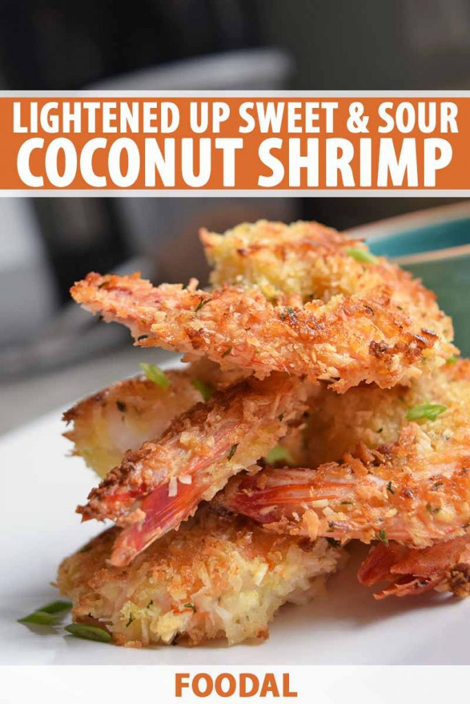 Vertical closeup image of a stack of several coconut shrimp with a golden brown panko crust, on a white plate, printed with orange and white text near the top and at the bottom of the frame.
