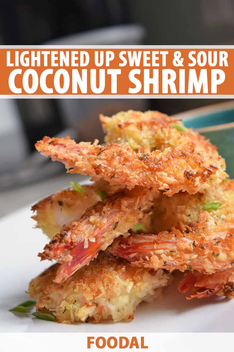 Vertical closeup image of a stack of several prawns with a golden brown panko crust, on a white plate, printed with orange and white text near the top and at the bottom of the frame.